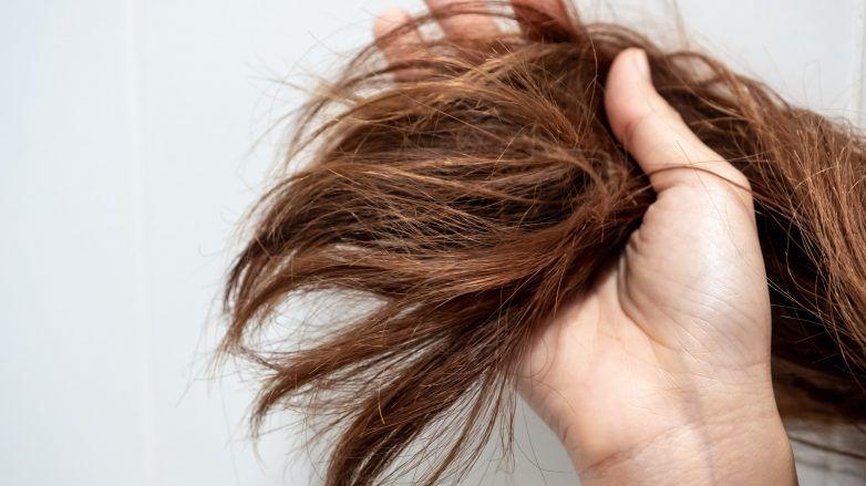 Femme tenant ses cheveux secs