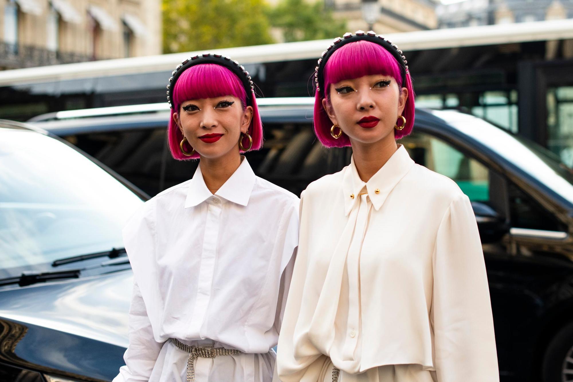 Jumeaux avec une bosse rose british avec une frange