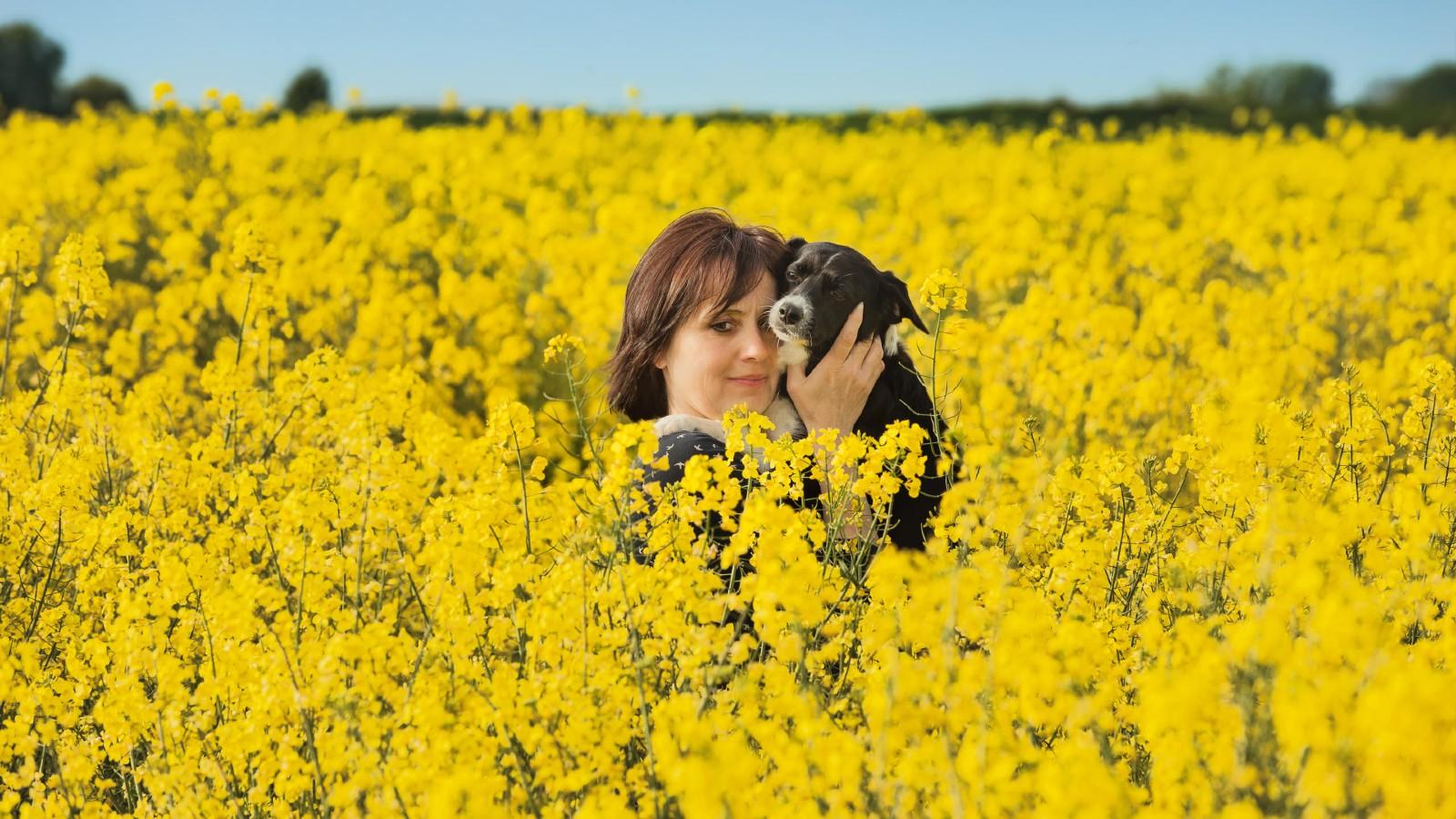 Une tendance Instagram mortelle pour les chiens, le dow et le propriétaire dans un champ de colza.