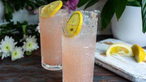 cocktails classiques avec du gin recette du sloe gin fizz
