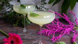 cocktails classiques avec gin recette southside