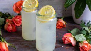 cocktails classiques avec gin recette tom collins