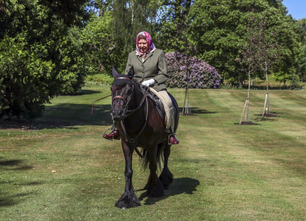 La reine Elizabeth II monte Balmoral Fern, un fell pony de 14 ans, dans le Windsor Home Park le week-end du 30 et 31 mai 2020 à Windsor, en Angleterre.