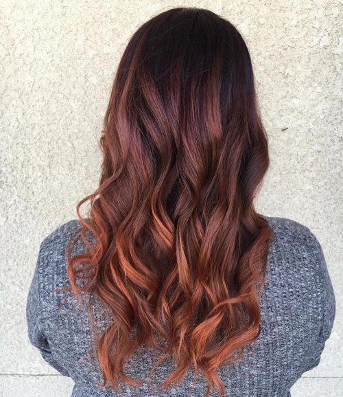 Couleur de cheveux Brown Plum Mahogany