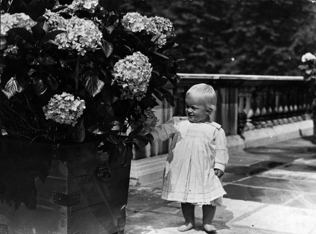 A un an, le Prince Philip de Grèce montre un intérêt pour les objets floraux.
