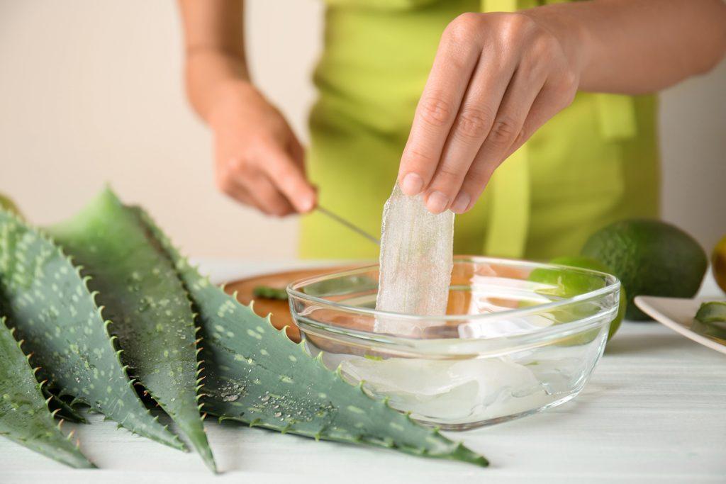 Aloe vera dans un bol