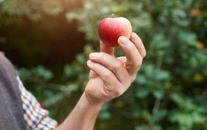 Homme tenant une pomme
