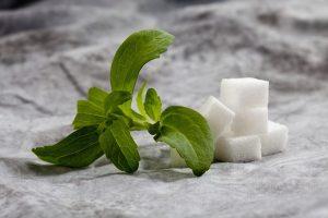 Stevia avec des morceaux de sucre
