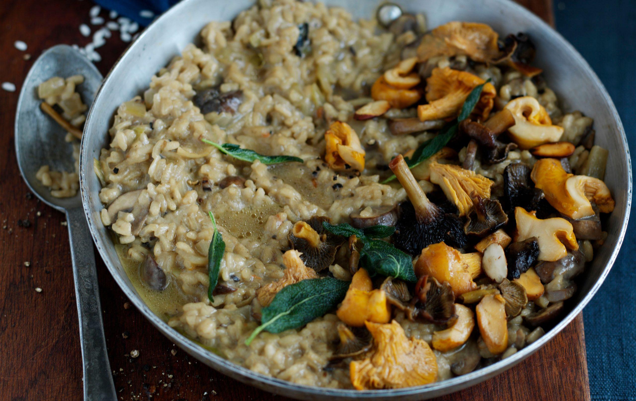 risotto aux champignons sauvages, repas hypocaloriques