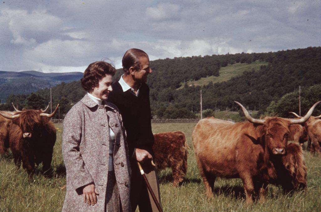 La reine Elizabeth II et le prince Philip dans un champ avec du bétail des Highlands à Balmoral, en Écosse, en 1972.