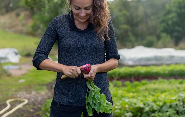 Femme dans un jardin familial en train de couper des betteraves.