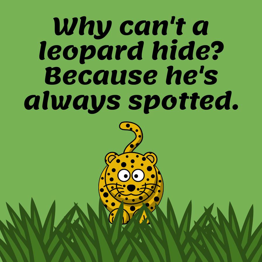 blague léopard pour les enfants