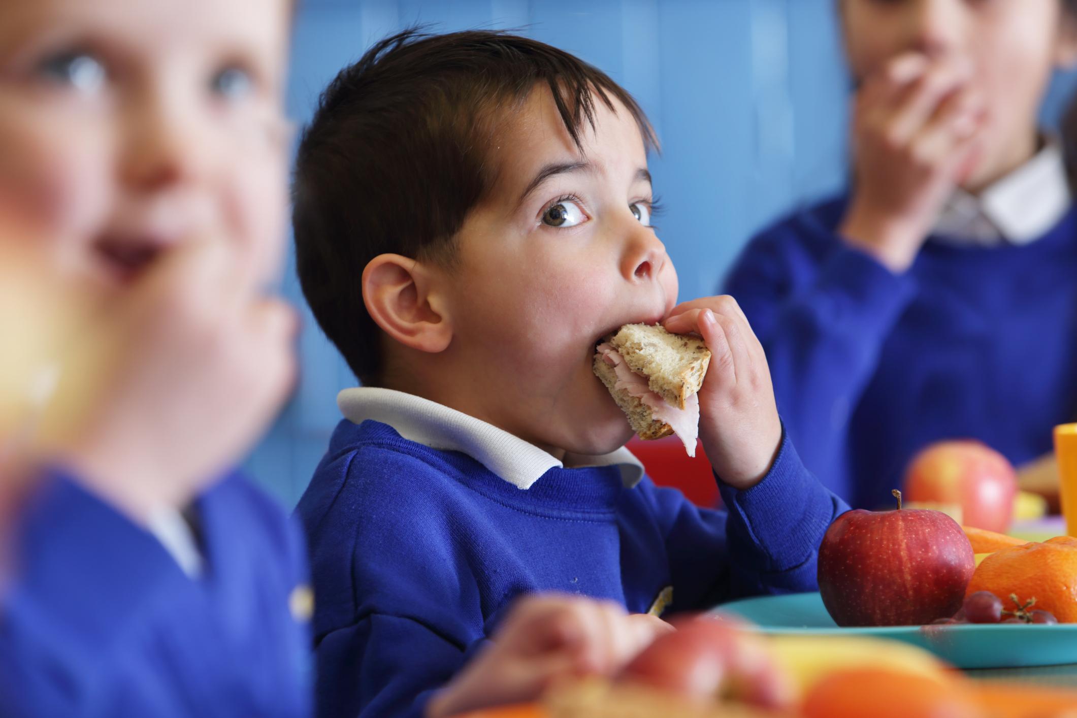 Un écolier mangeant un repas scolaire, une bonne question à poser lors de la visite d'une école primaire.